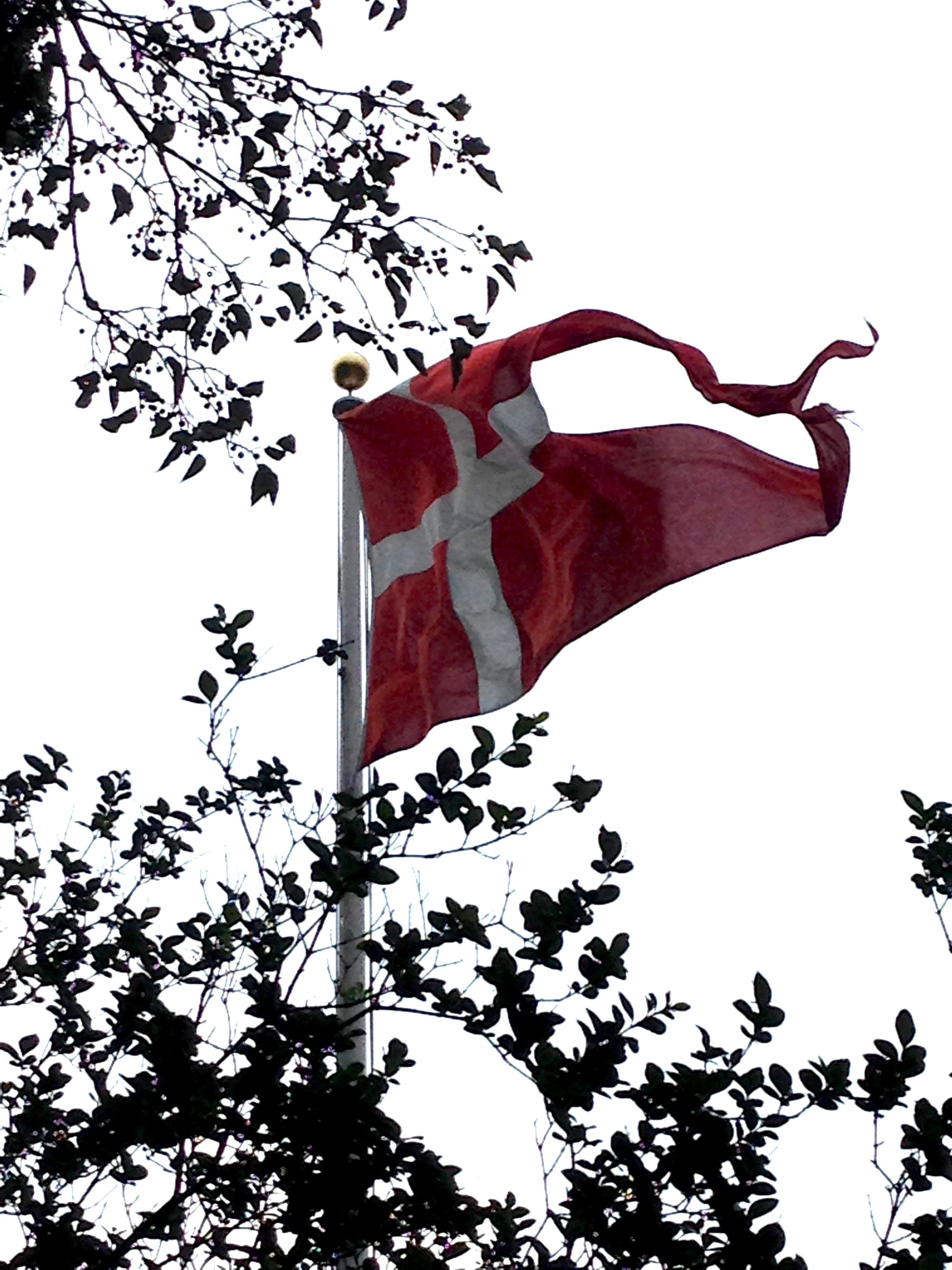 historical polish flags